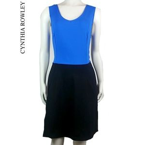 Cynthia Rowley Color Block Fit & Flare Dress